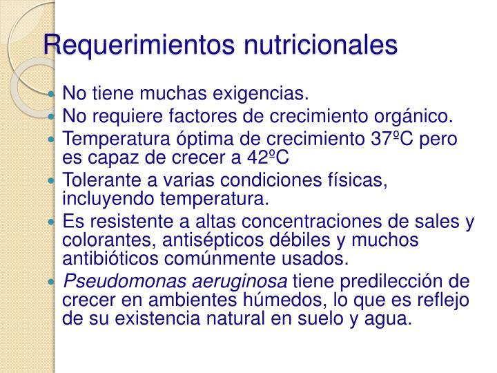 Requerimientos nutricionales