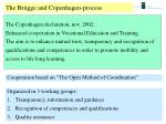 the br gge and copenhagen process