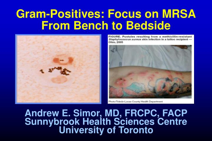 Gram positives focus on mrsa from bench to bedside