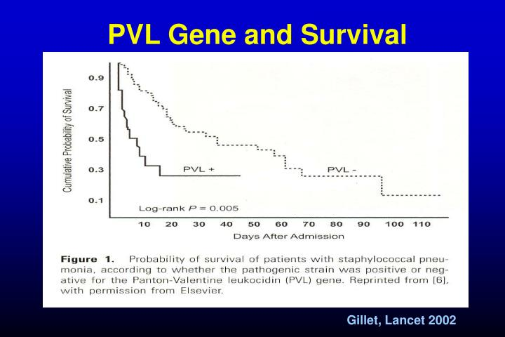 PVL Gene and Survival