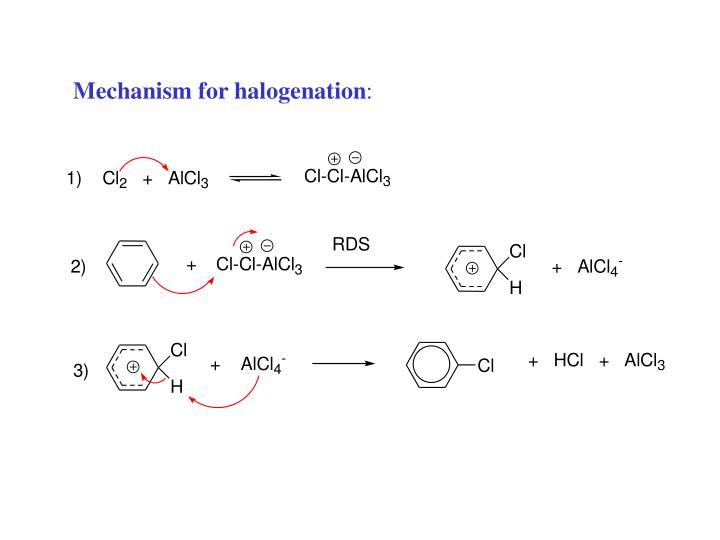 Mechanism for halogenation