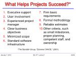 what helps projects succeed