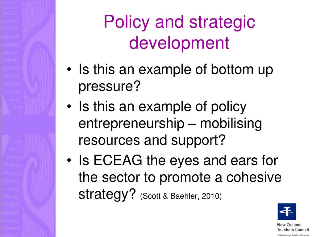 Policy and strategic development