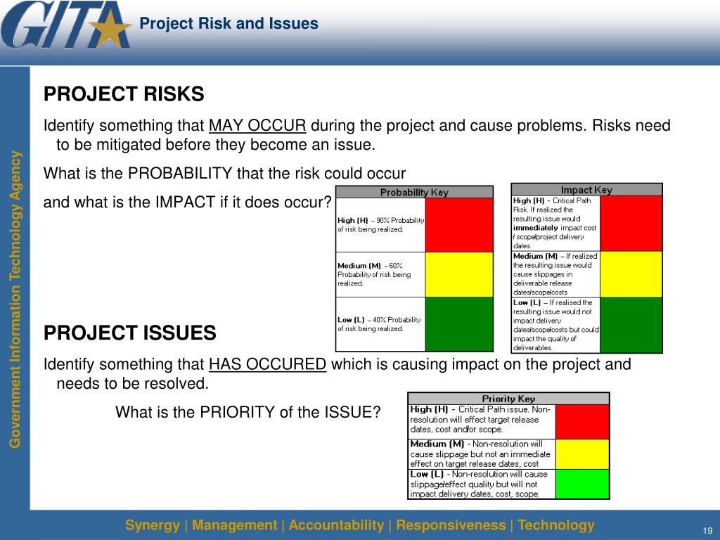 Project Risk and Issues