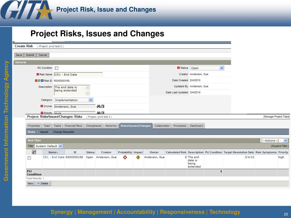 Project Risk, Issue and Changes