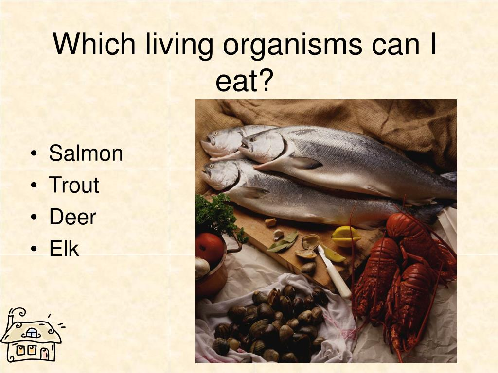 Which living organisms can I eat?