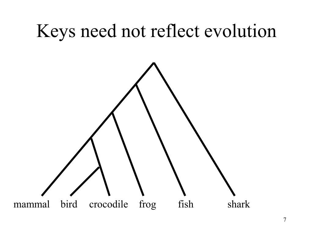 Keys need not reflect evolution