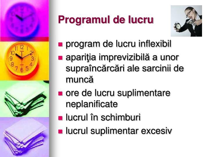 Programul de lucru