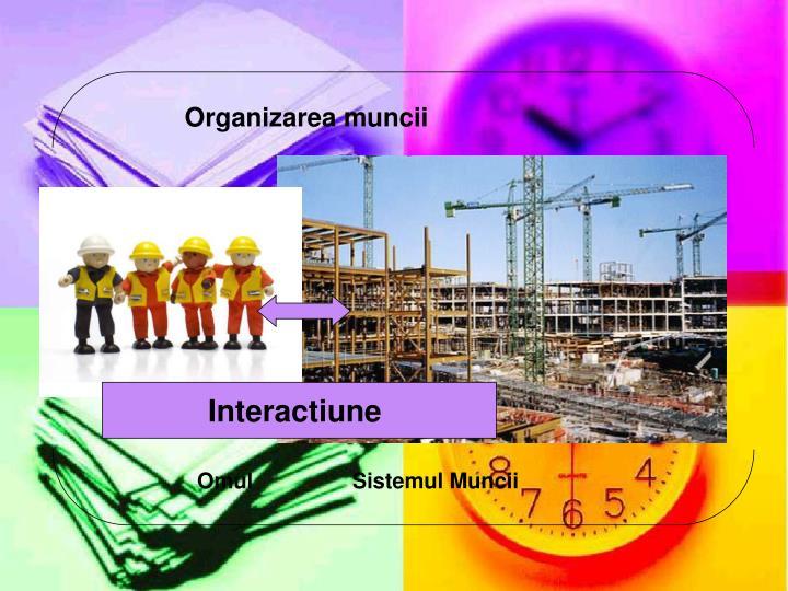 Organizarea muncii