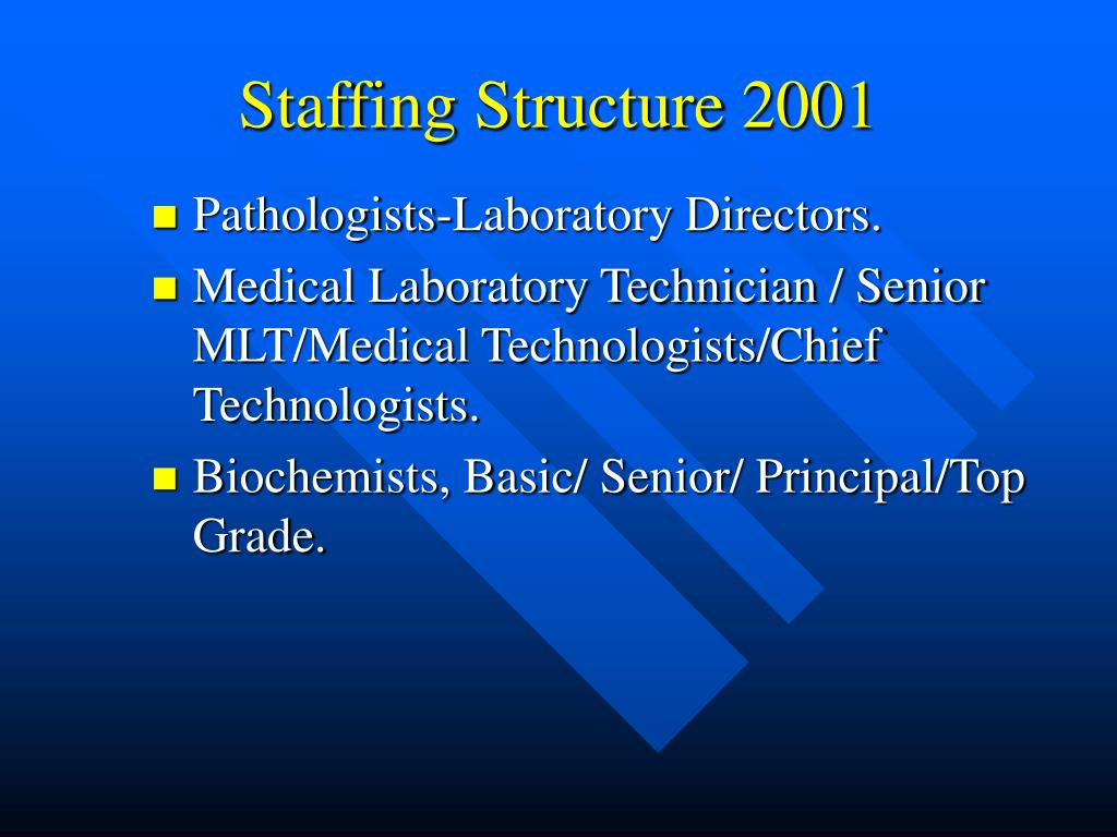 Staffing Structure 2001