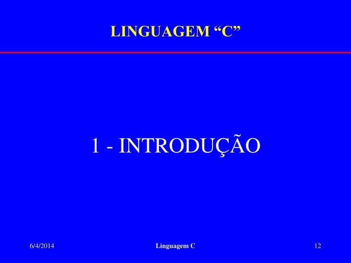 "LINGUAGEM ""C"""