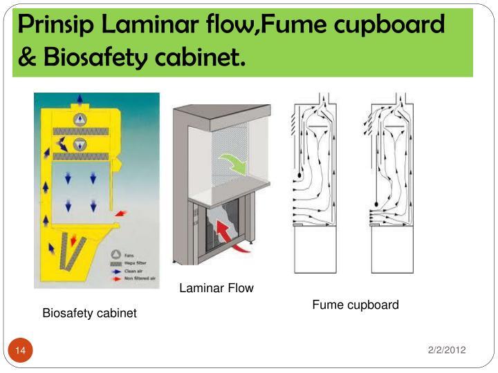 Prinsip Laminar flow,Fume cupboard & Biosafety cabinet.