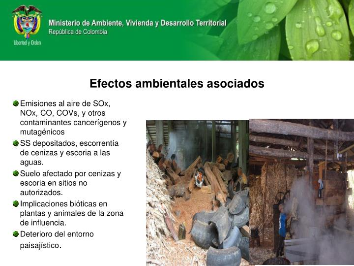 Efectos ambientales asociados