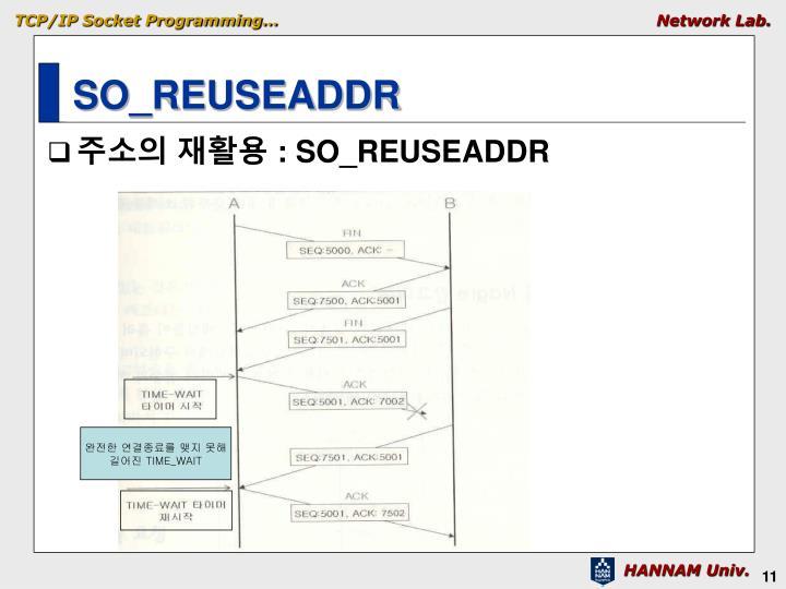 SO_REUSEADDR