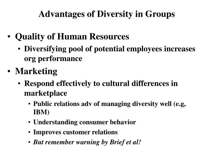 human resources and diversity essay