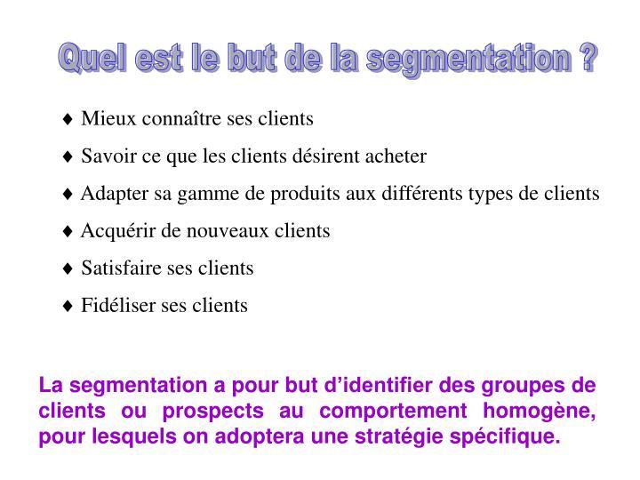 Quel est le but de la segmentation ?