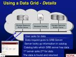 using a data grid details