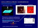 local optical fields nanoparticles3