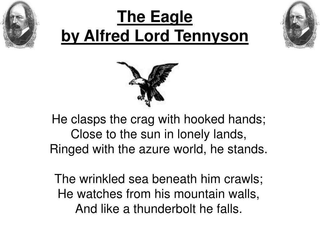 the eagle tennyson analysis