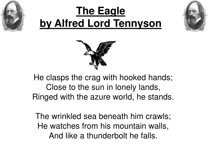 PPT - The Eagle by Alfred Lord Tennyson PowerPoint Presentation, free  download - ID:972764