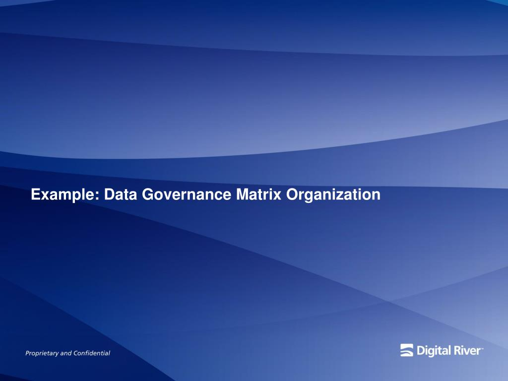 Example: Data Governance Matrix Organization