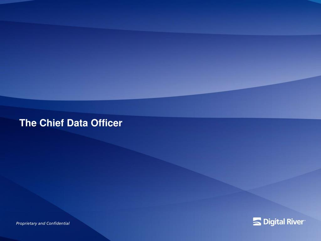 The Chief Data Officer
