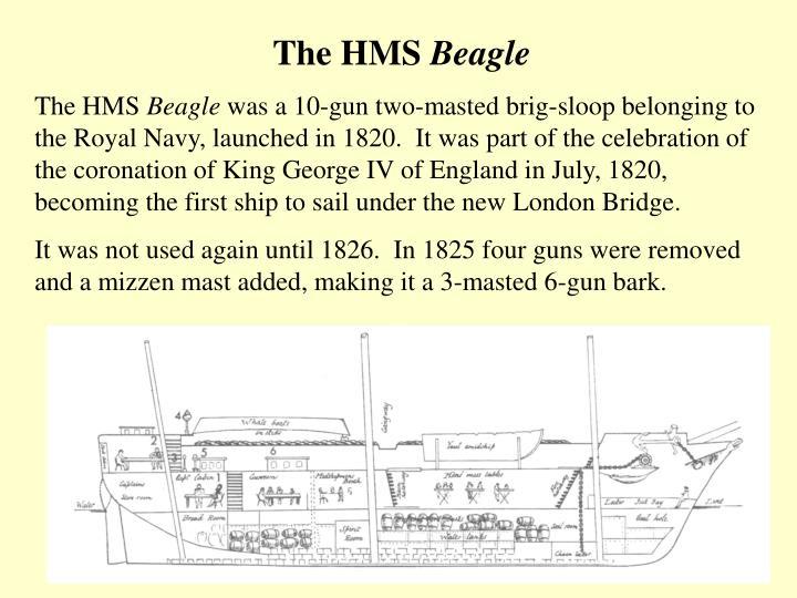 The HMS