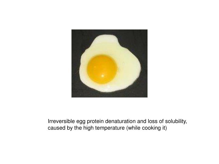 Irreversible egg protein denaturation and loss of solubility,