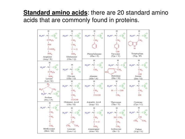 Standard amino acids