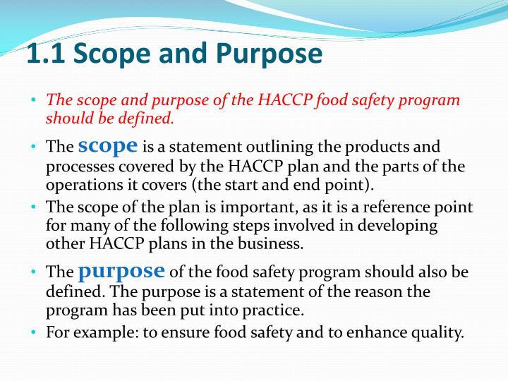 1.1 Scope and Purpose