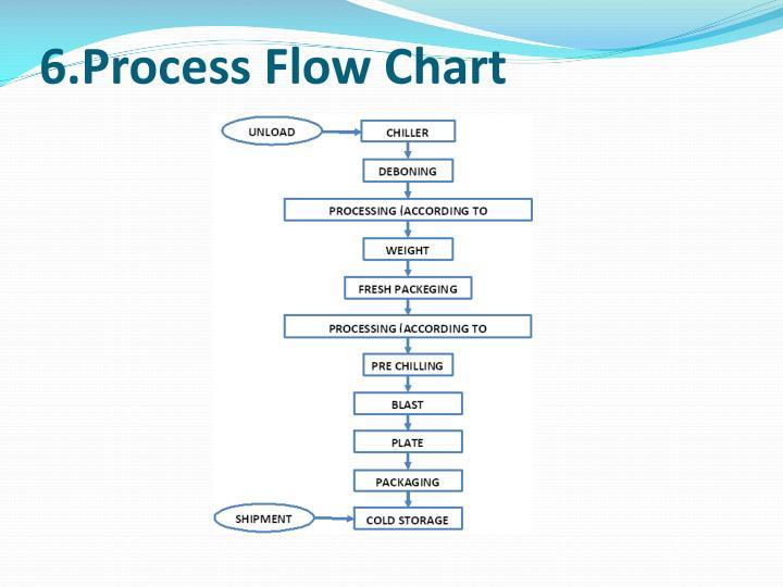 6.Process Flow Chart