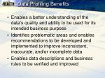 data profiling benefits