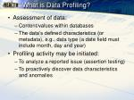 what is data profiling