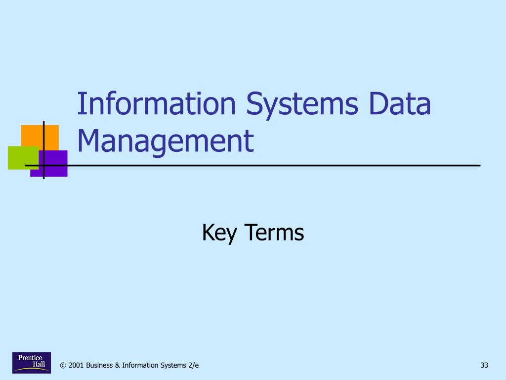 Information Systems Data Management