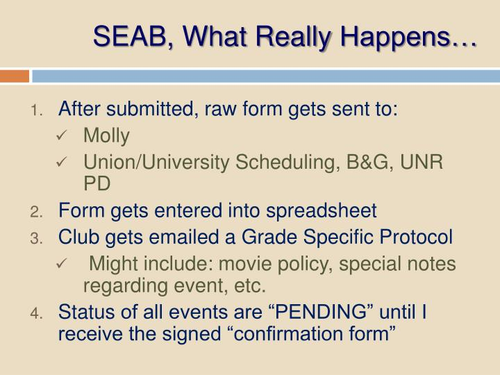 SEAB, What Really