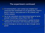 the experiment continued29