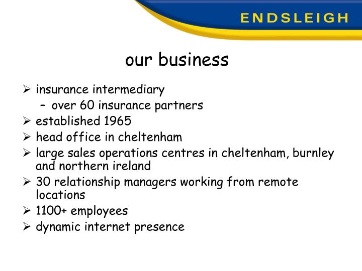 Our business