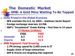 the domestic market smb a gold mine waiting to be tapped