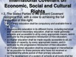 international covenant on economic social and cultural rights29
