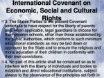 international covenant on economic social and cultural rights30