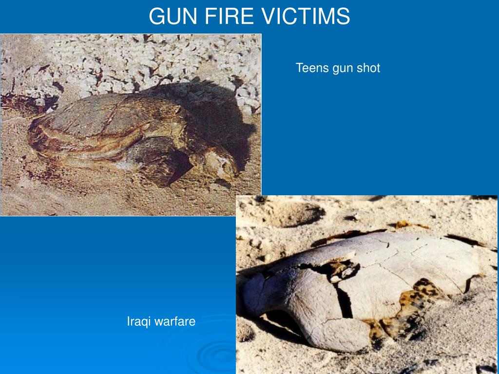 GUN FIRE VICTIMS