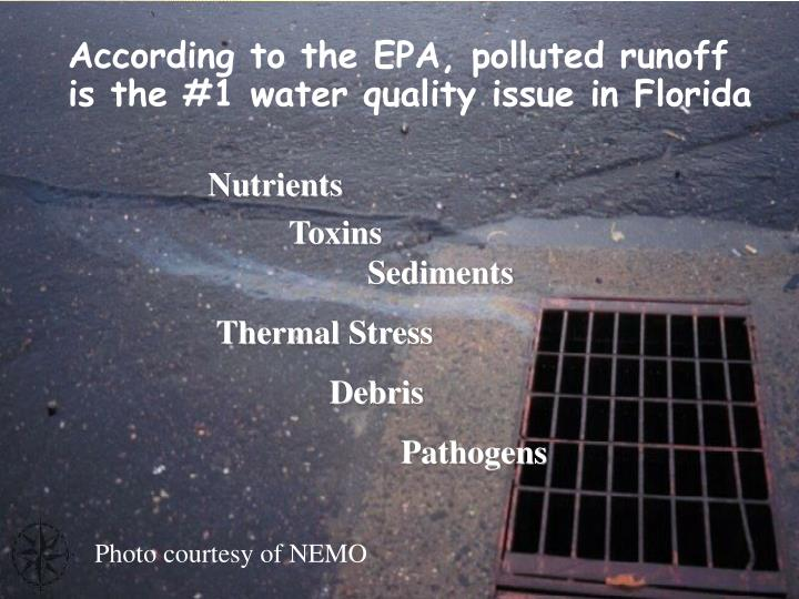 According to the EPA, polluted runoff is the #1 water quality issue in Florida