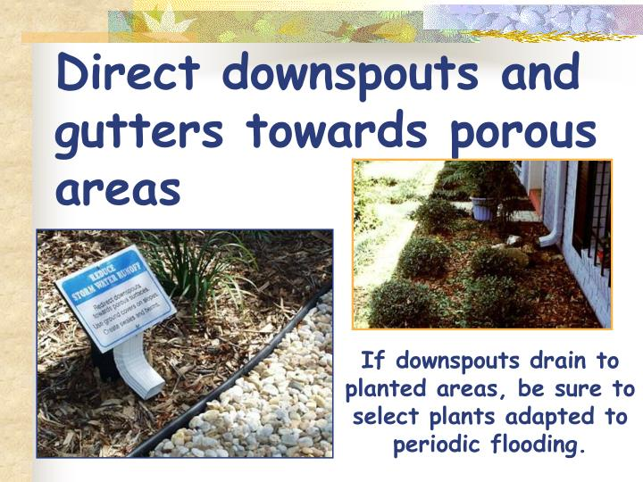 Direct downspouts and gutters towards porous areas