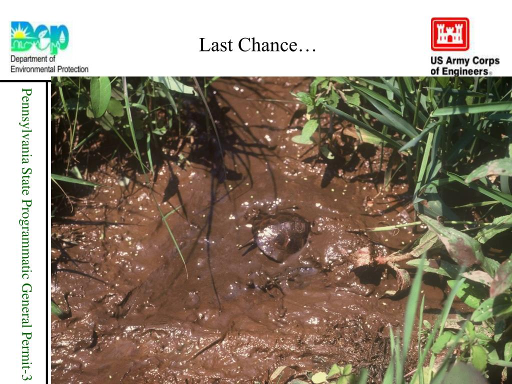 Last Chance…