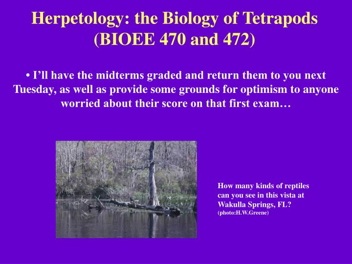 herpetology the biology of tetrapods bioee 470 and 472 n.