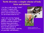 turtle diversity a simple scheme of body form and habitats