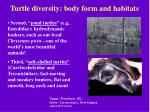 turtle diversity body form and habitats