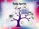 turtle species17