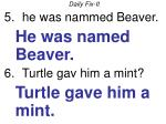 daily fix it he was nammed beaver he was named beaver turtle gav him a mint turtle gave him a mint