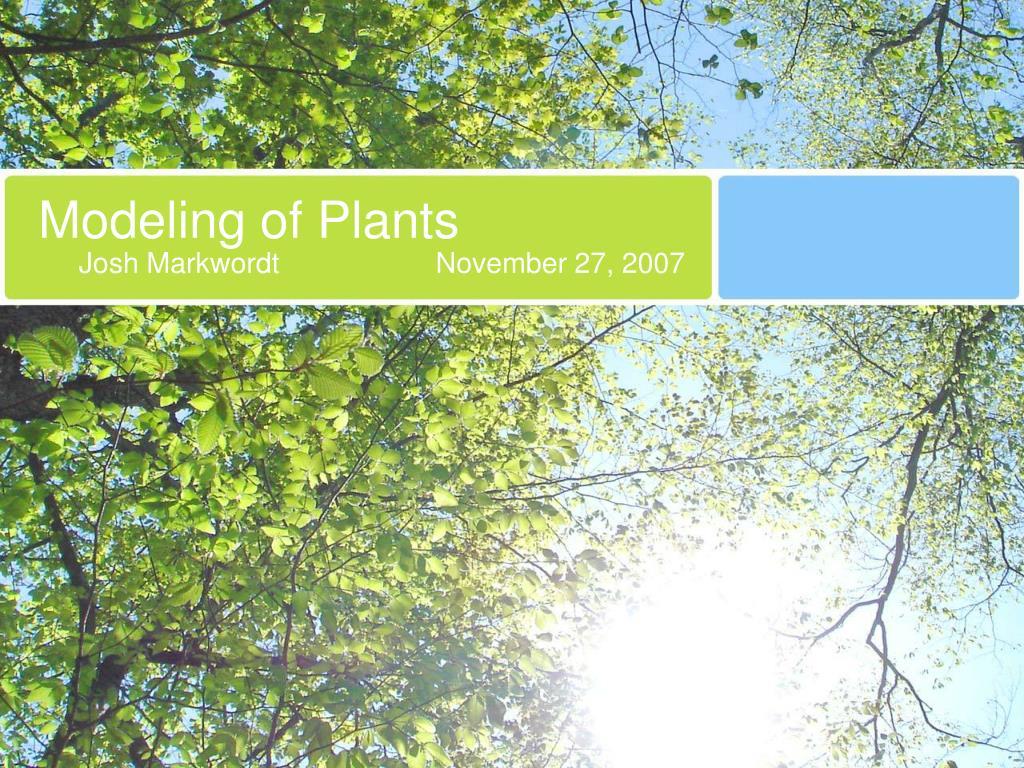 modeling of plants l.